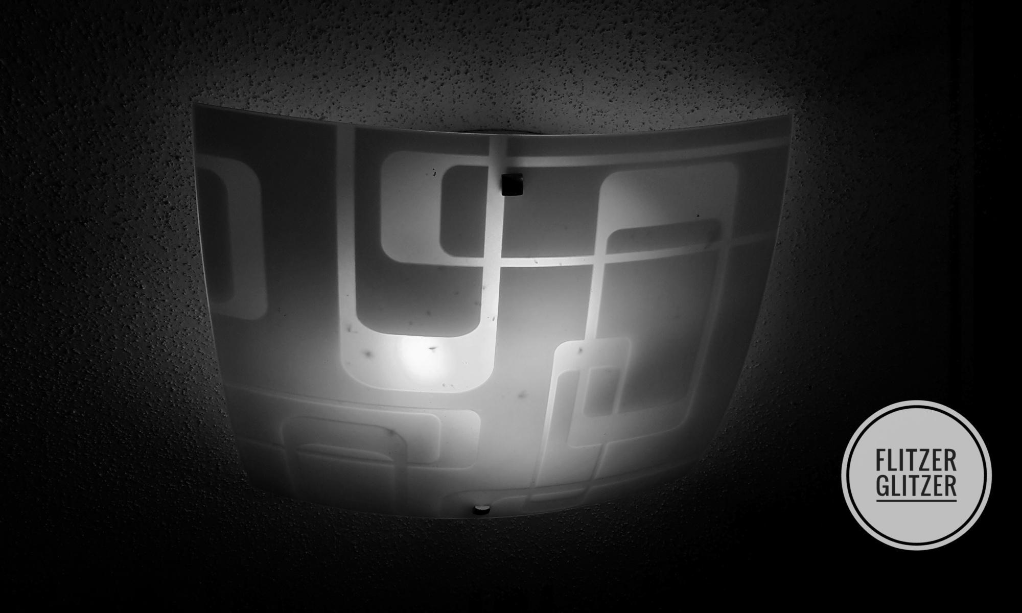 Glasschirm einer Deckenlampe mit verendeten Tierchen im Inneren
