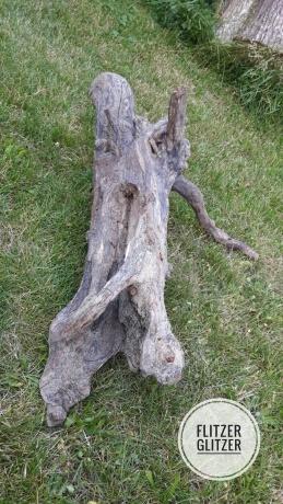 Treibholz im Rasen liegend