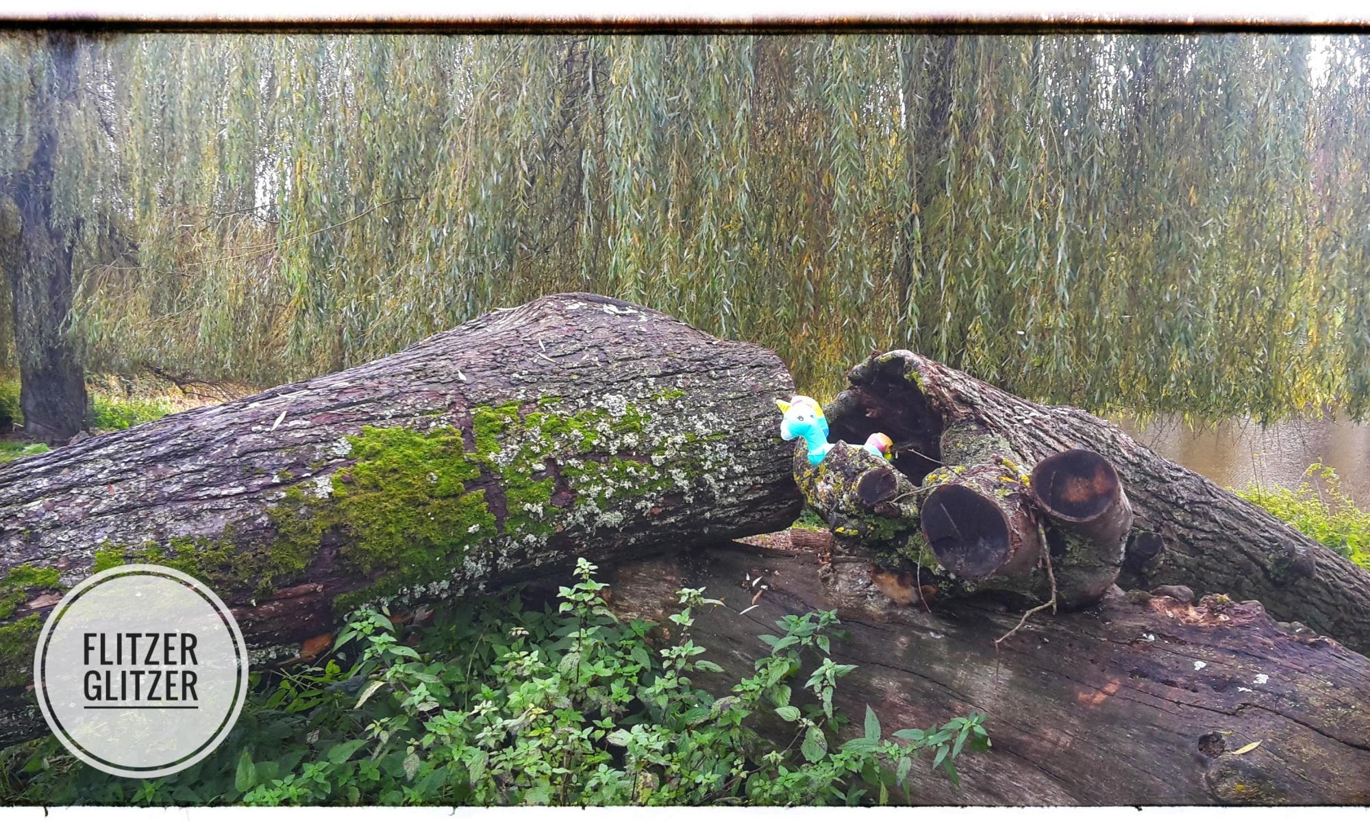 Kleines buntes Plastikeinhorn auf umgefallenen Baumstämmmen